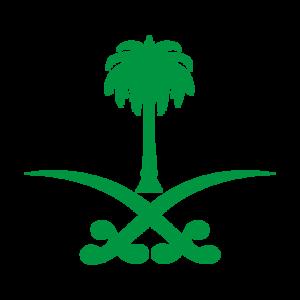 39 human rights groups call on Google to cancel Saudi Arabian data center