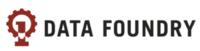 Data Foundry Logo