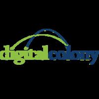 DigitalBridge announces partnership with ImpactData to target underserved communities