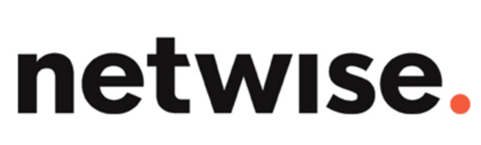 Netwise Logo