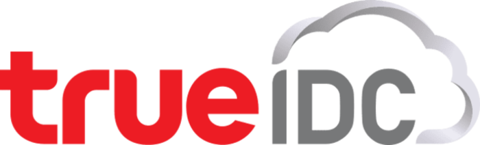 True IDC Logo